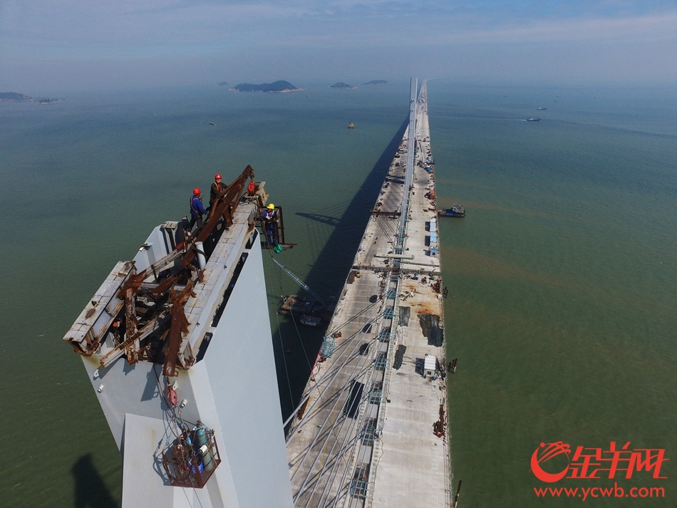 【港珠澳大桥年度回顾】筑梦者——非凡工程背后的非凡人生