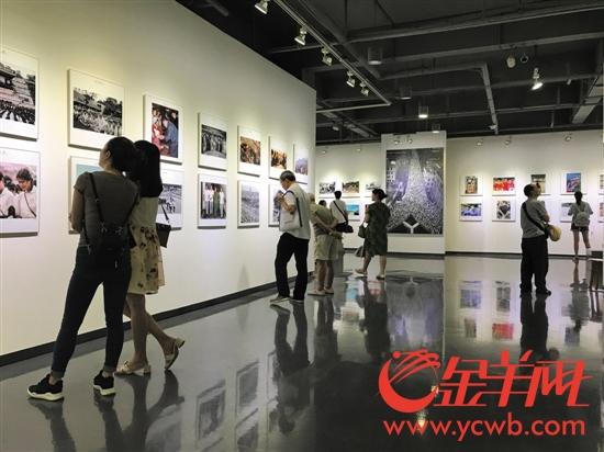 8月6日,炎热的天气无法阻挡市民观看《一甲子一瞬间》摄影展的热情