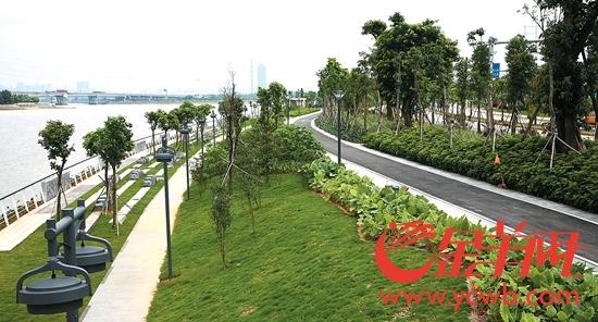 广州生物岛绿道满眼翠绿