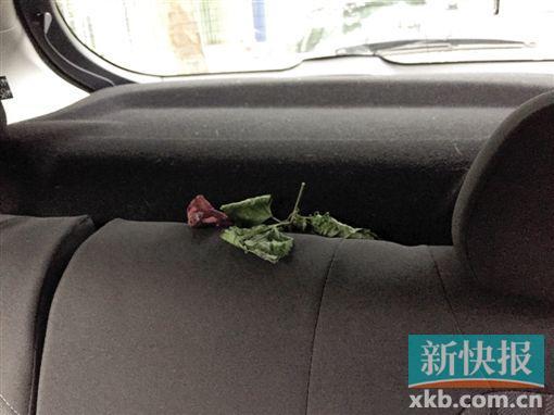 """共享汽车投用后遭遇""""不适"""" 广州不少停车场不让进入"""