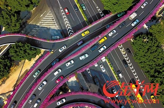 广州建设枢纽型网络城市陈秋明