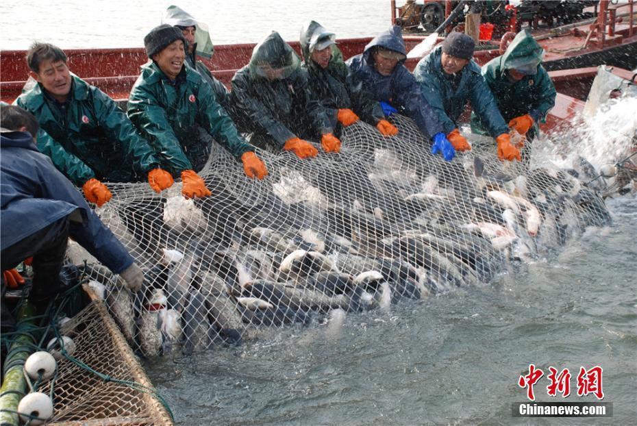 湖南大湖冬捕季启动 人欢鱼跃丰收忙
