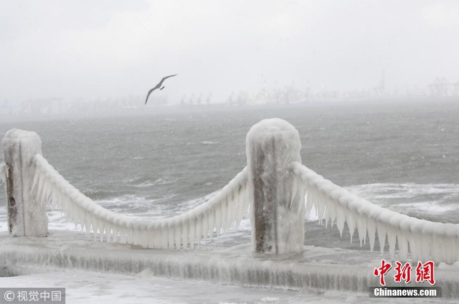"""山东烟台遭遇""""极冷""""天气 海边护栏结冰凌"""