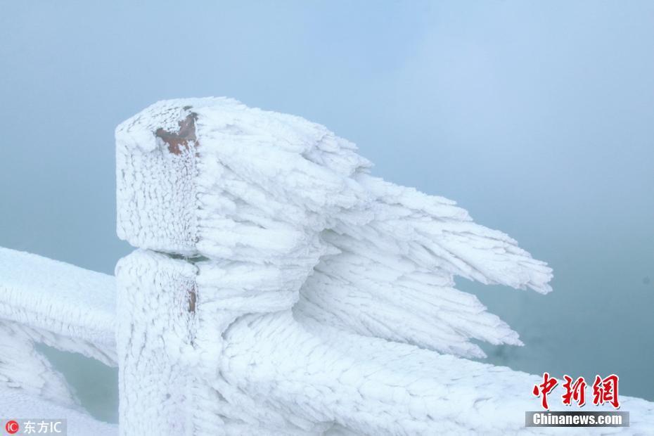 连续寒潮冰冻 广东金子山现冰墙与冰珊瑚