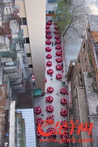 庆祝电梯加装一周年,荔湾这栋老楼500多街坊大摆筵席