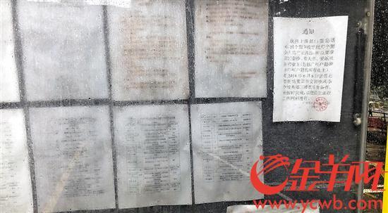 广州白云区某小学招生 收到十几本假房产证