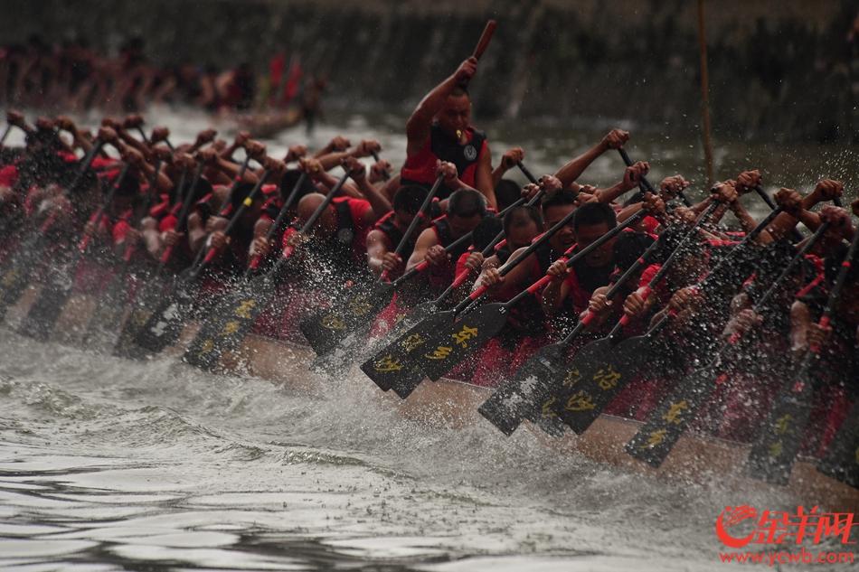 端午节即将来临,广州民间最火爆的龙舟赛6月12日在天河车陂敲响第一锣。飘扬的彩旗、激溅的水花、坚实的肌肉、响亮的号子……今年车陂村龙舟赛一共有12条龙船参加。 记者邓勃摄
