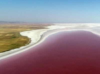土耳其盐湖盐藻生长 将湖水变美丽红酒色