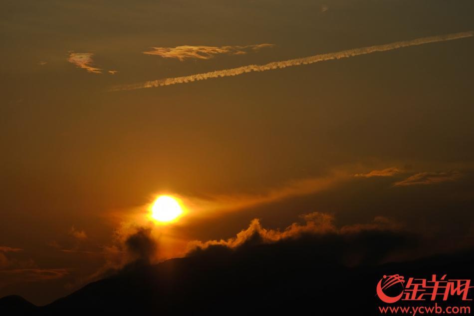 """广西龙胜的金坑梯田,被誉为""""中国最美曲线"""",是世界旅游景观一绝,立秋刚过,山巅气势磅礴,满眼翡翠,美不胜收,如一幅壮美画卷。绵延10多平方公里的金坑梯田开挖于元朝时期,历经几百年风风雨雨。暑假接近尾声,不少人慕名赶来享受山区清凉,欣赏稻谷初长,绿油油一片 。金羊网记者  陈秋明 摄影报道"""