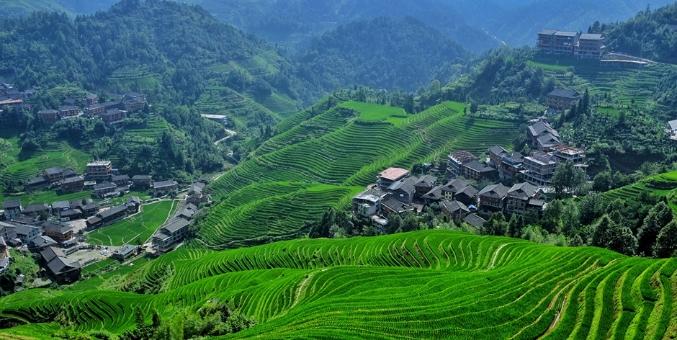 中国最美曲线 广西金坑梯田满眼翡翠