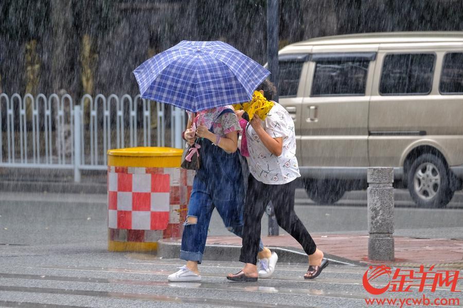 今日(13日)下午4时30分,一团乌云从广州天空飘过,伴随着阵阵闷雷声,下起倾盘大雨。东风西路附近,路上街坊急急走避。受台风影响,近日广州天气多变,街坊出门还是要带伞防备。金羊网记者 陈秋明 摄影报道