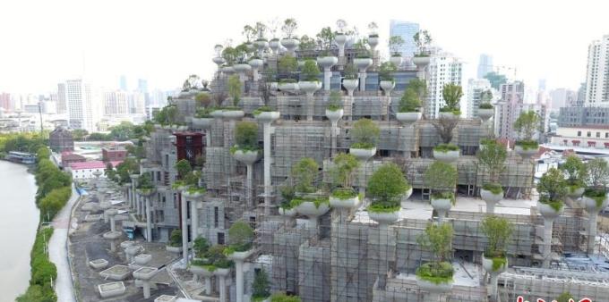 上海一建筑群绿植错落有致似空中花园