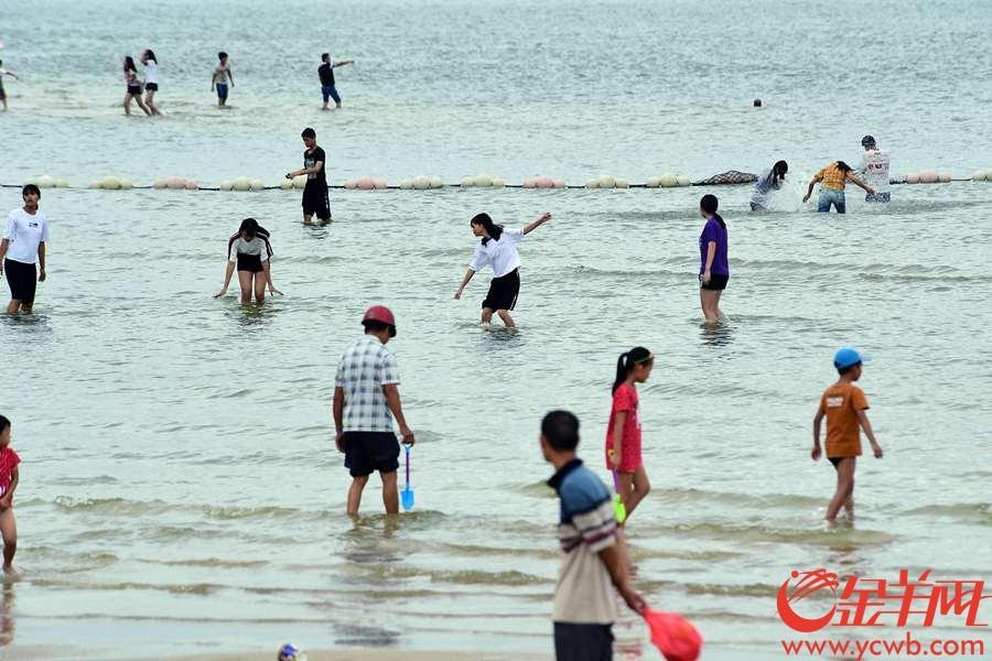 """第23号台风""""百里嘉""""对湛江影响不大,9月13日湛江金沙湾海滨浴场许多市民还在玩耍。 图/金羊网记者 邓勃"""