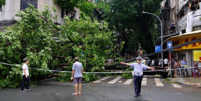 """台风""""山竹""""过后的广州"""