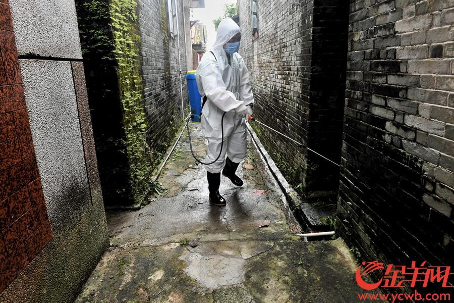 2018年9月18日上午,臺山市白沙鎮五圍村,村內水澇退去後,白沙鎮中心衛生院的工作人員正在噴灑消毒劑預防災後傳染病等疫情發生。金羊網記者 湯銘明 攝