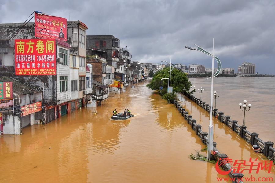 2018年9月18日,廣東陽春昨天出現的最高水位16.4m,超過警戒水位近3m。廣東氣象局發布,今早8點,陽春仍超警戒水位2.5m。目前陽春各街鎮仍有大面積的低洼地區積水,今天陽江的雨勢跟昨天相比有所減弱。漠陽江二橋附近的積水已經明顯下降了許多。水退了的地方市民開始進行清理工作,而部分較低洼地方,仍要靠橡皮艇進行救援。 金羊網記者 黃巍俊 攝