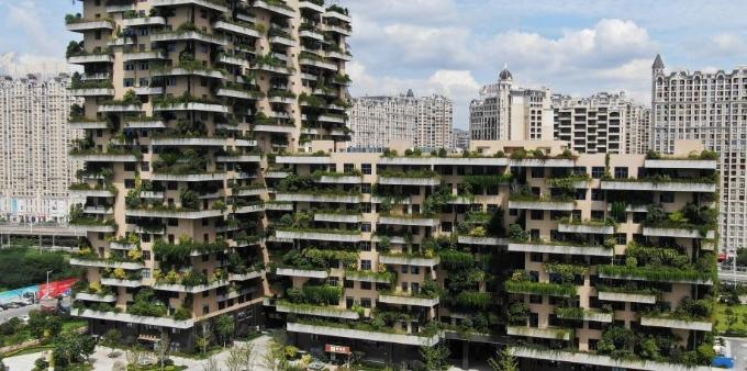 """航拍江苏句容""""植物建筑"""" 绿意盎然"""