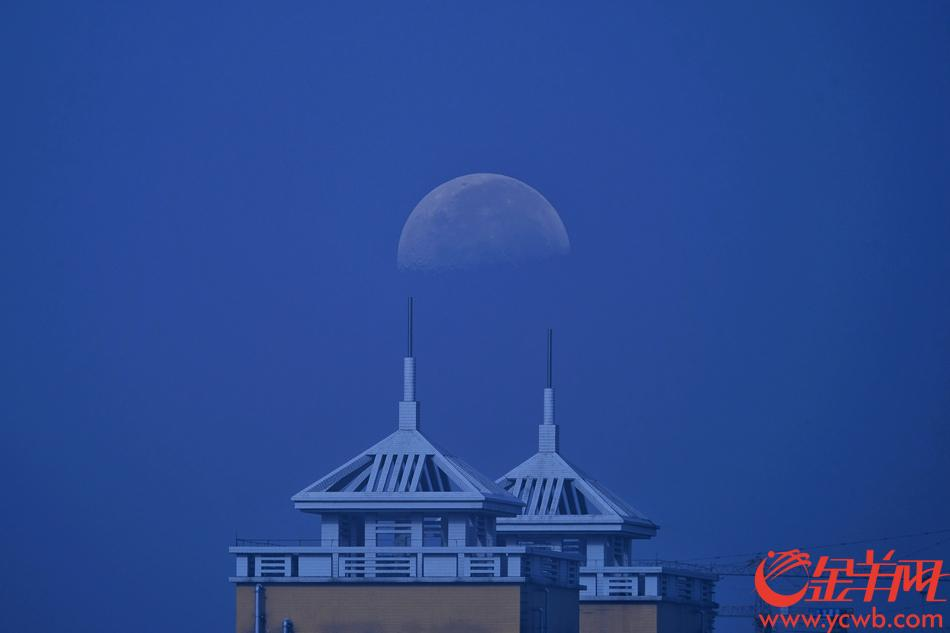 """10月2日,广州天气晴朗,秋高气爽,蓝天白云下,就连月亮也不愿意离开,要为""""广州蓝""""增辉。金羊网记者 陈秋明 摄"""