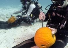 水下南瓜雕刻比赛 参赛者泡海水拼刀工