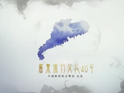 广东流行文化40年——动漫