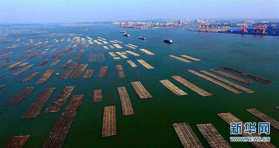 广西省白海市地图