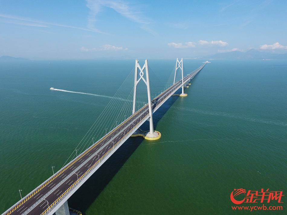 2018年8月10日,港珠澳大桥青州航道桥 金羊网记者 林桂炎 摄