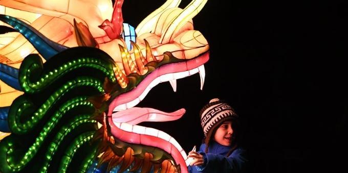 中国彩灯点亮科隆冬夜