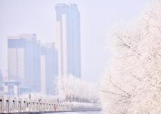 吉林松原松花江畔現霧凇景觀