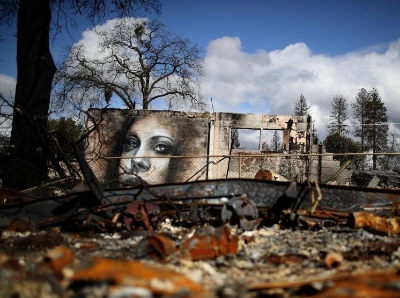 废墟上的另类生机 美国山火重灾区现逼真壁画