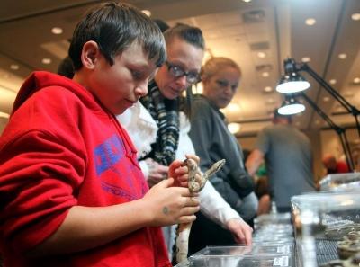 多倫多舉行加拿大爬行動物博覽會