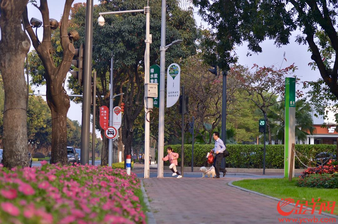 2019年3月12日是植树节,在广州二沙岛-临江大道的绿道网中,众多市民在绿道上跑步、骑行,在由绿道连接起的各个公园和景点处健身、游玩,大家走进绿色、亲近自然,享受植树栽绿带来的成果 金羊网记者 梁喻 摄