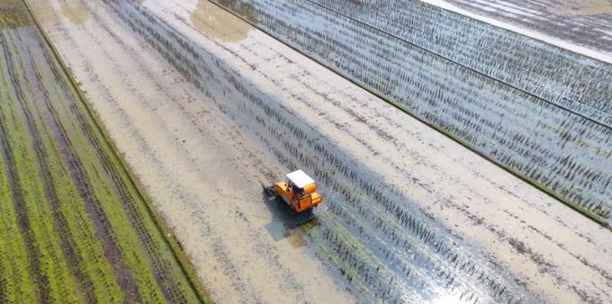 湖南天气回暖农民开展春耕春播作业 养蜂人也忙碌起来了