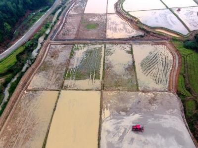 江西吉水:高標準農田春耕忙