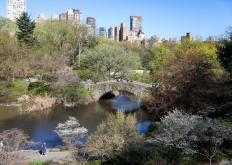 世界园林巡礼——纽约的城市花园:中央公园