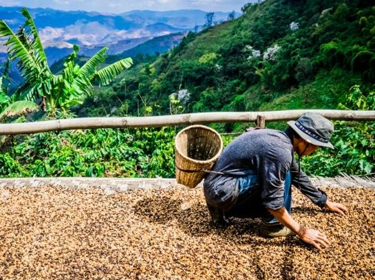 怒江边的咖啡