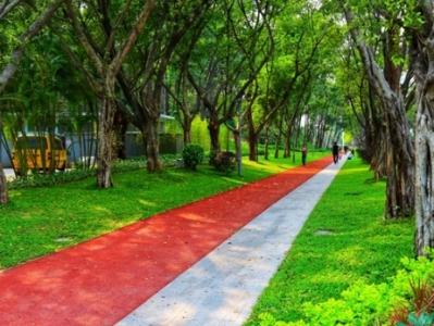 靓爆!这是广州绿道的最美地图,请收藏!