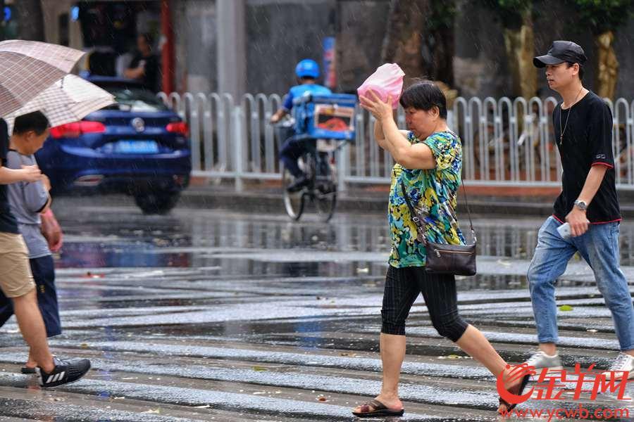 """5月15日中午,突然一团乌云飘过,雷声隆隆,原本阳光灿烂的广州天空,立刻""""翻脸"""",骤雨倾盆,狂风大作,街上行人急忙躲避。但不到半个小时,乌云飘走,天空立即又变回""""烈日当空"""",真是""""孩儿脸,说变就变""""。文/图 沙龙国际网站记者  陈秋明 摄"""
