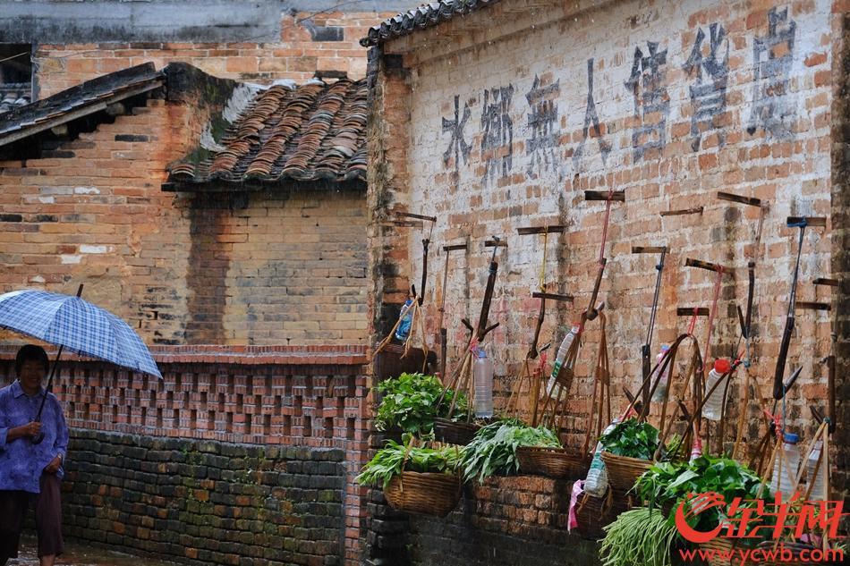 """德庆金林水乡早就有""""无人售货"""",乡亲邻里和谐诚信"""