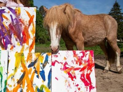 """英国""""学霸""""马创作多幅""""抽象画"""" 色彩斑斓令人惊叹"""
