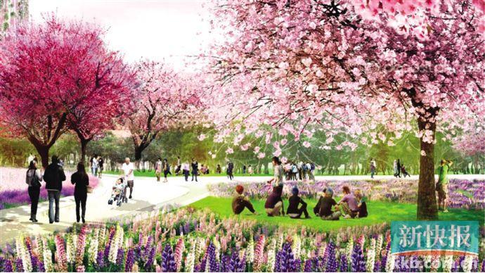 广州海珠湿地将大变身 升级为国际重要湿地