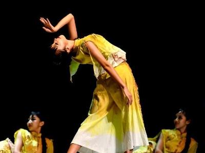 2019年粤港澳大湾区文化艺术节国际舞蹈季启幕