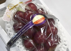 日本再現天價水果 一串葡萄拍出120萬日元創紀錄
