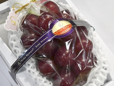 日本再现天价水果 一串葡萄拍出120万日元创纪录