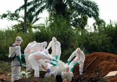 世卫组织宣布刚果埃博拉疫情为全球卫生紧急事件