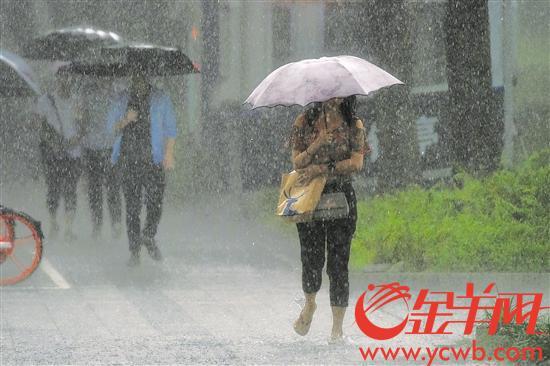 """台风""""韦帕""""在湛江登陆 暴雨来袭广东转移23988人"""