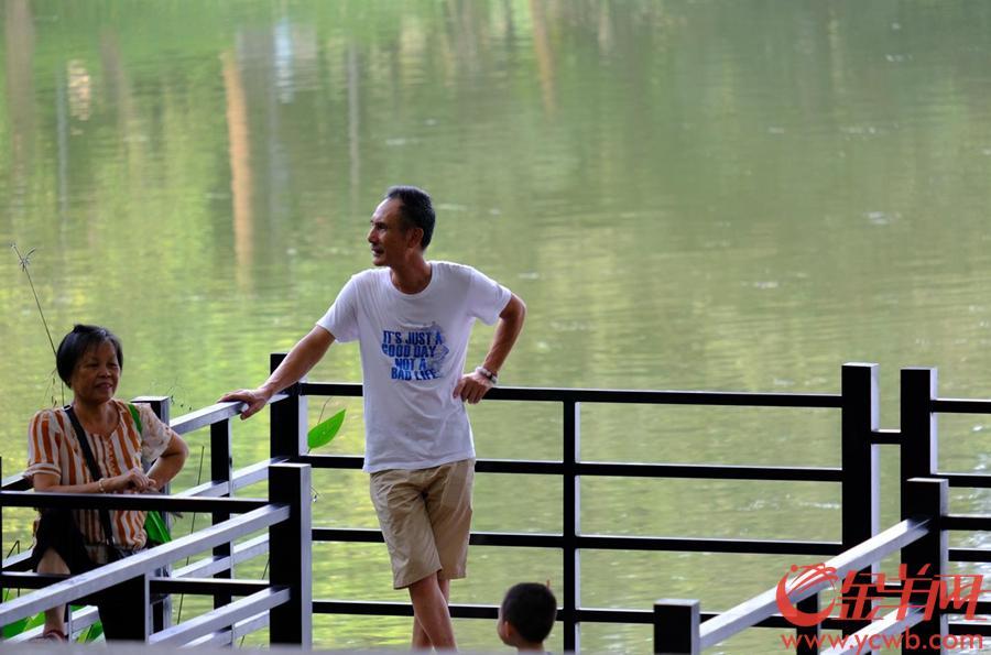 广州麓湖作为一个稍微远离市区的山野之地,一直都是个不错的清凉之地。这里的难以停车,没有站点,因此车流量不大,而沿湖栈道颇为完善,成为周边街坊的福地。记者看到许多市民都在此乘凉休憩,乐也融融。图/文  金羊网记者 戚耀琪 摄