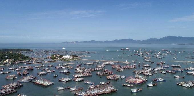 南海伏季休渔期结束 广东渔船开启耕海牧渔
