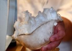 """日本一家刨冰店原料""""奢侈"""" 來自冬季露天水池的結冰"""