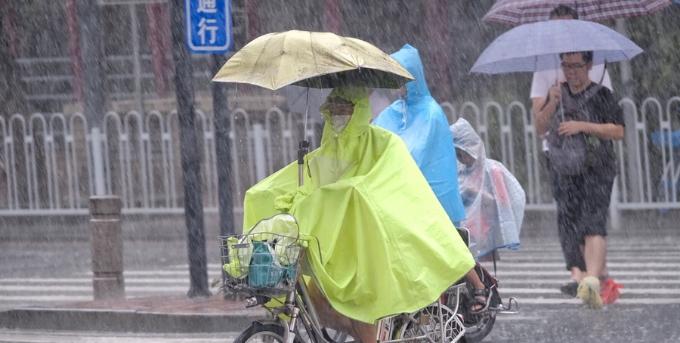 白鹿继续发威,广州街坊风雨上班