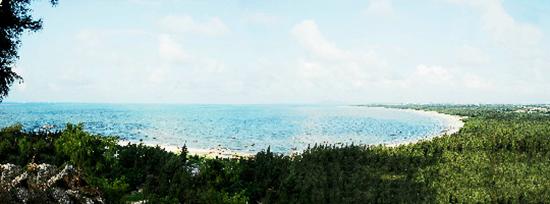广东营建沿海防护林带2885公里